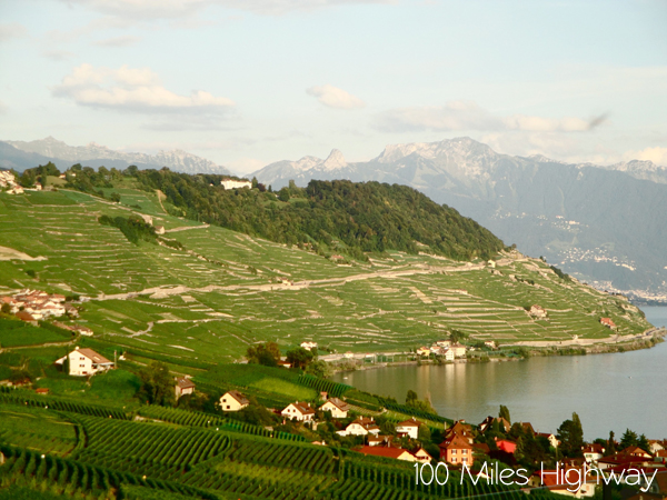 Lavaux Wine Region, Switzerland
