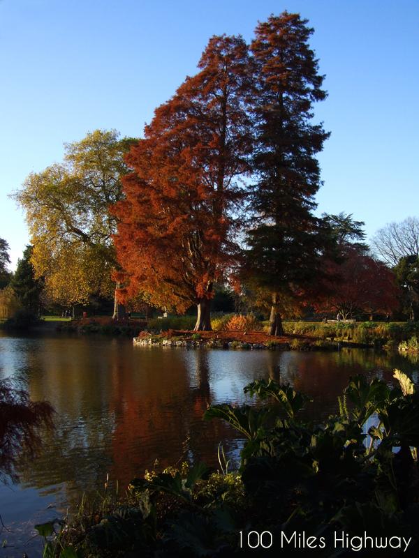 Fall In Kew Gardens, London